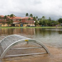 Gregory Park, 28 January 2013. The tide was still rising, and water was gushing into the park through this drain.