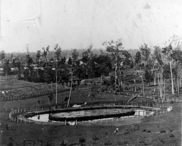 The pond constructed in the grounds of Auchenflower House, 1885. (State Library of Queensland, Neg. no. 150992)