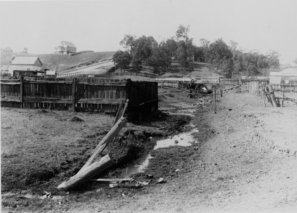 Old creek bed running between Fernberg Road and Mary Street, Paddington, ca. 1905. (State Library of Queensland, Negative no. 47487)