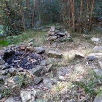 An old campsite by a tributary of Cubberla Creek, Mount Coot-tha