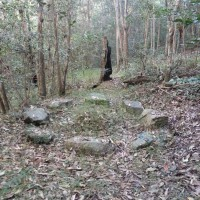 Part of an old campsite by a tributary of Cubberla Creek, Mount Coot-tha.