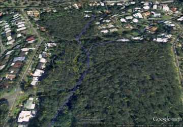 The path of Western Creek leading up to Birdwood Terrace, showing features from the City Council's 'Detail Plans' from the 1940s-1960s.