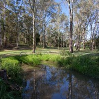 Rehabilitated pond on the Fernberg grounds