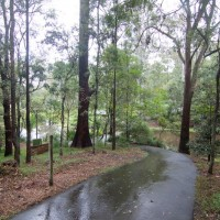 Approaching the ornamental ponds in the south-east corner of the Fernberg grounds
