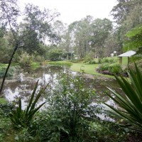 The lower of the two ornamental ponds at Fernberg