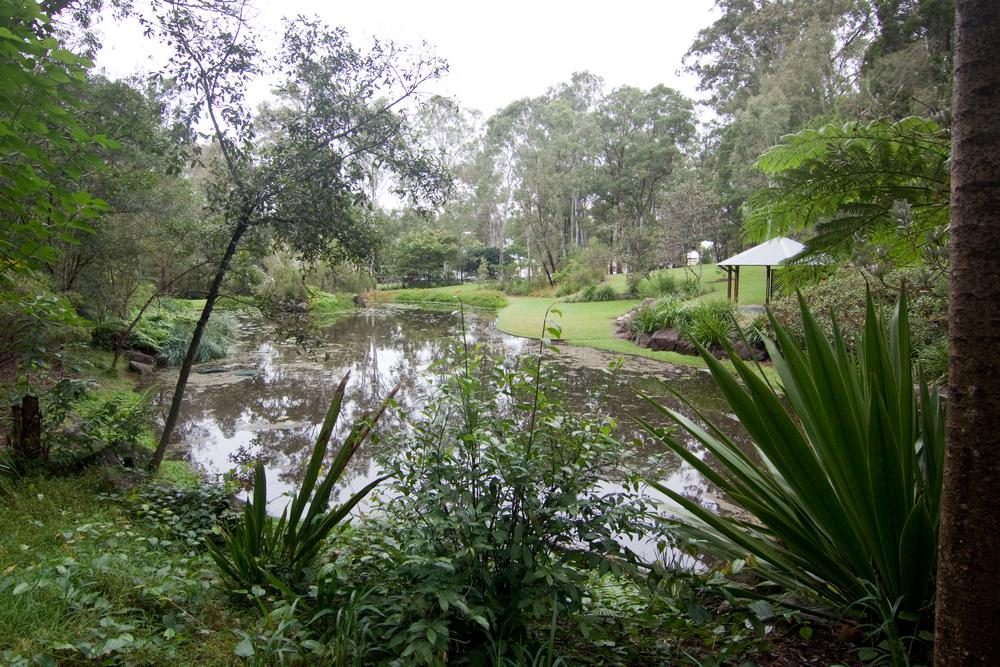 Fernberg from the inside there once was a creek for Ornamental pond