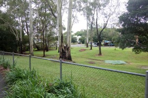 The old horse paddock at the bottom of the Fernberg grounds. The stormwater pipe can be seen running through the middle.