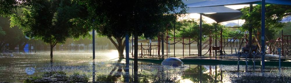 Gregory Park in flood, 14 January 2011