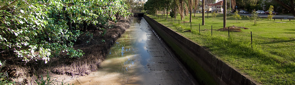 Toowong Creek and Milton Drain