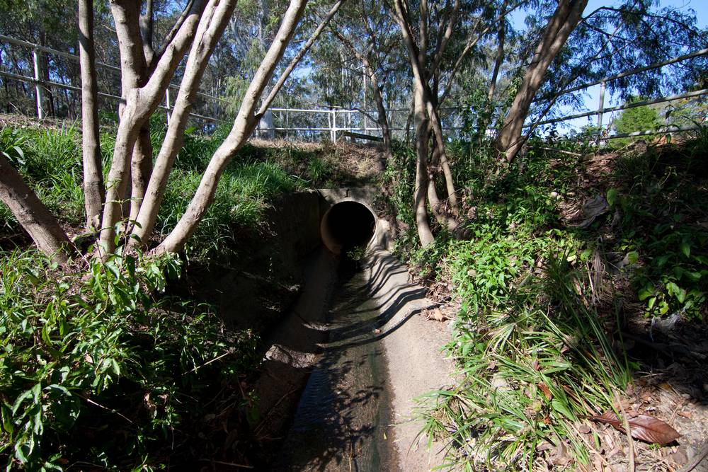The downstream end of the drain pit in Norman Buchan Park