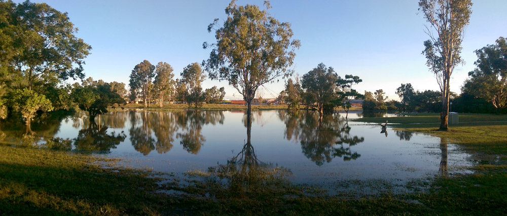 Kookaburra Park, Rocklea, flooded by Stable Swamp Creek (4:45pm, Saturday 2 May).