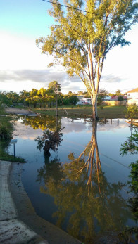 Flooding in Boobock St, Rocklea, 4:53pm, 2 May.